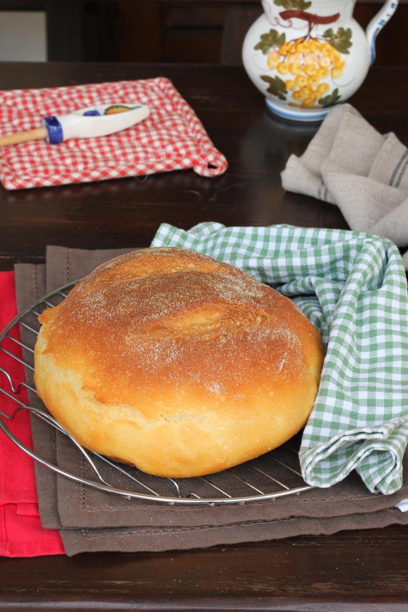 PANE di semola soffice ricetta originale pane di semola rimacinata di grano duro