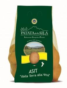 asit-patate
