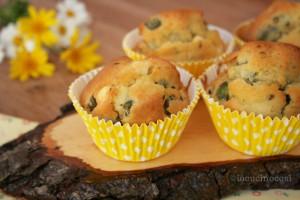 Muffin fave e pecorino