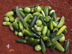 Carosello - Immagine presa dal web