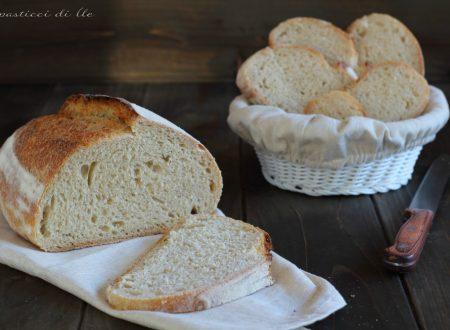 Pane a lievitazione naturale con farina di tipo 1 e cottura frigo-forno