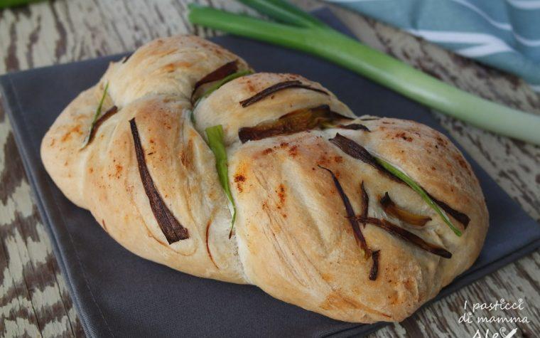Treccia di pane ai cipollotti e paprika