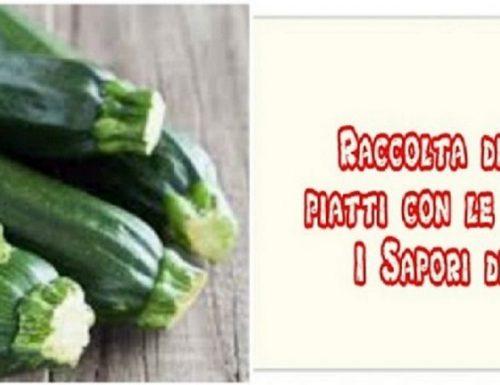 Raccolta di primi primi piatti con le zucchine