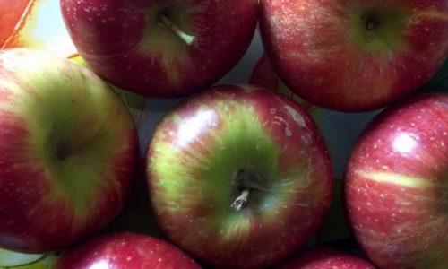 Marmellata di mele ricetta
