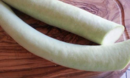 Cucuzzata siciliana detta zucchina lunga verde