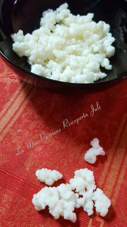 Ricetta Yogurt Bimby Con Fermenti Lattici.Yogurt Fatto In Casa Fermenti Lattici La Mia Passione Riscoperta Juli