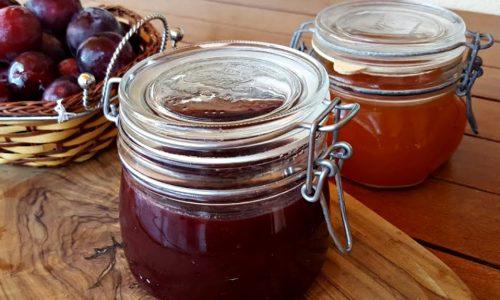 Marmellata di prugne rosse bimby tm5