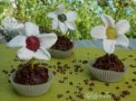 Muffin primavera al cacao