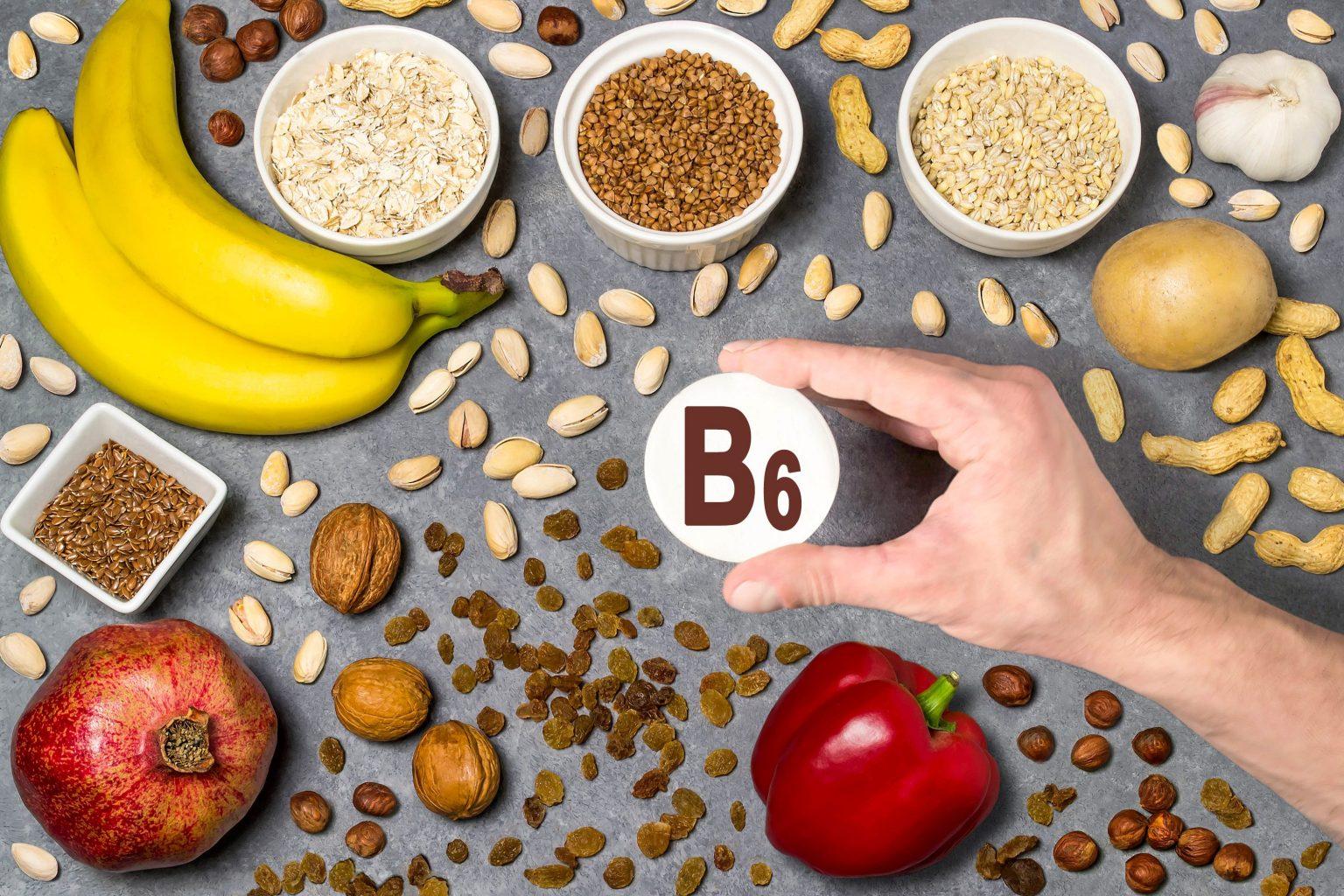Tres tipos de Metabolismo basale Cuál se aprovechará del dinero