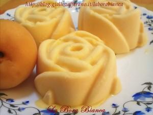 Parfait di albicocche e cioccolato bianco   ricetta dolce senza forno   La Bora Bianca