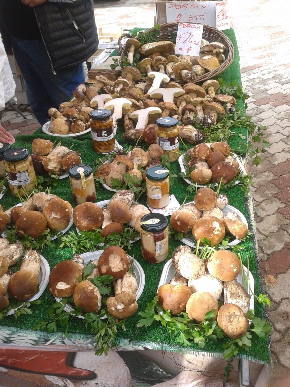 bancarella funghi