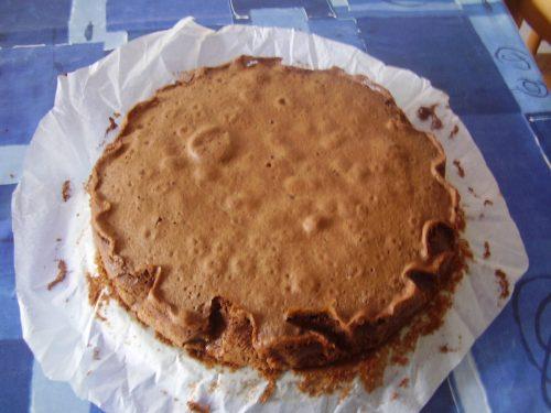 SPONGE CAKE AL CACAO
