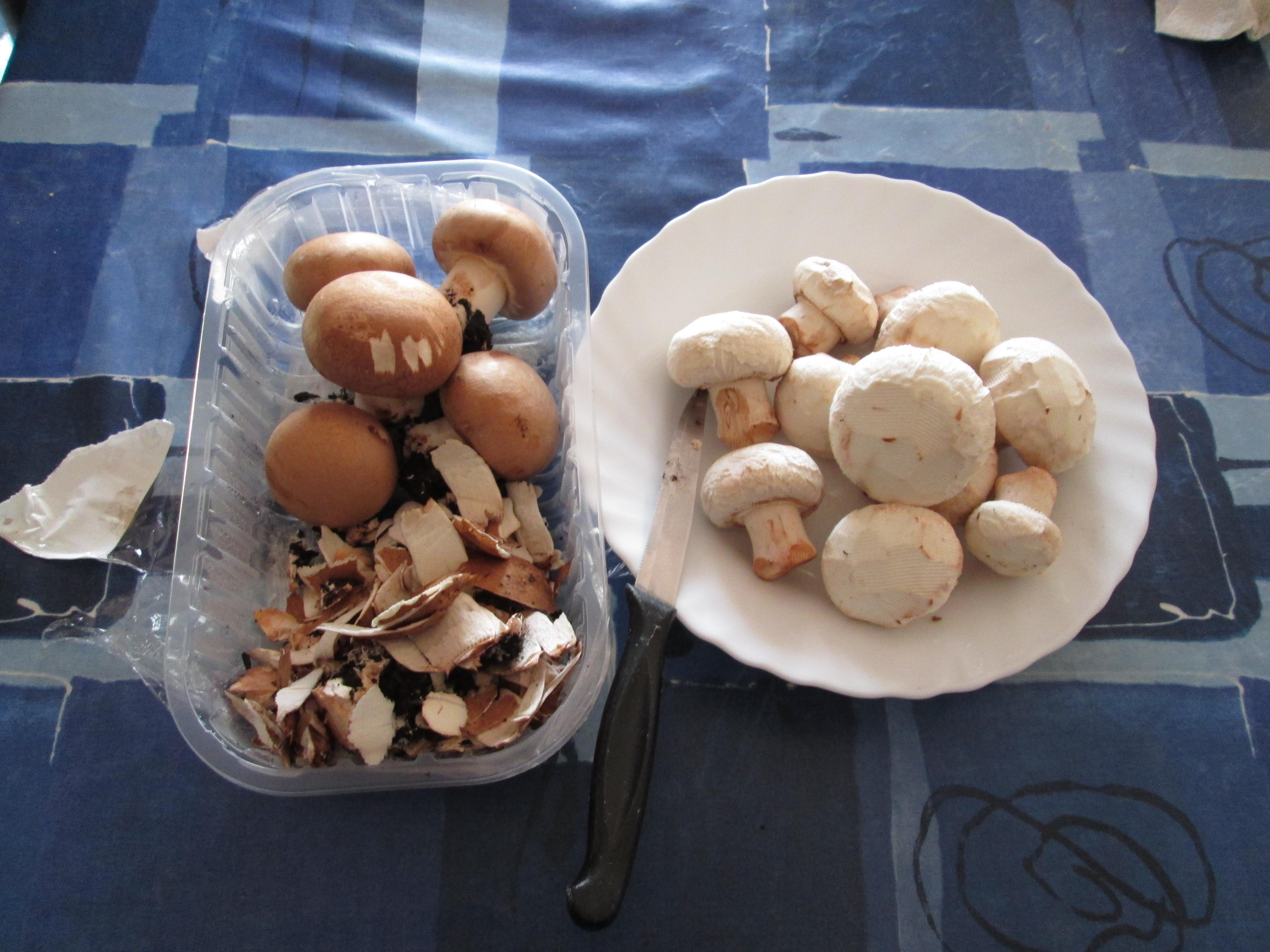 Se è possibile guarire un fungo su aceto di sidro di mela di unghie