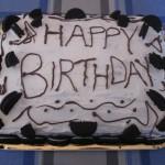 NEO CHOCOLATE CAKE WITH WHITE CREAM