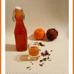Liquore all'arancia speziato