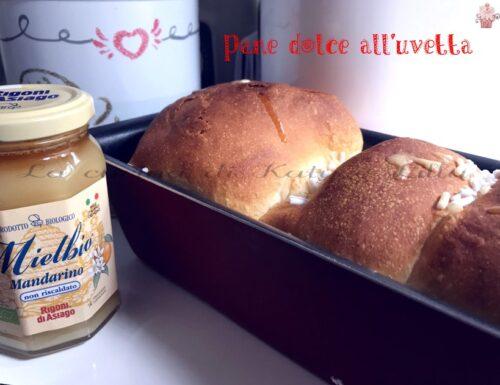 Pane dolce all'uvetta mdp con miele | Ricetta vegan