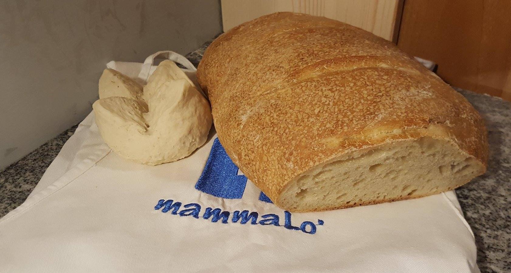 Pane cotto con il mio nuovo forno