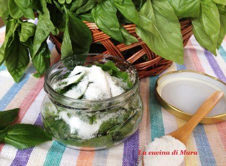 Basilico sotto sale: come conservarlo