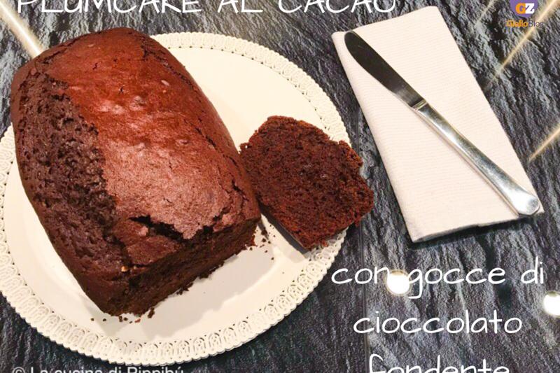 Plumcake al cacao e gocce di cioccolato sofficissimo
