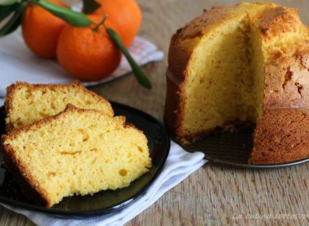 Torta ai mandarini frullati senza lattosio – con e senza Bimby