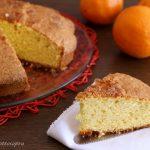 Torta pan d'arancio con Bimby e senza Bimby - velocissima con arancia frullata
