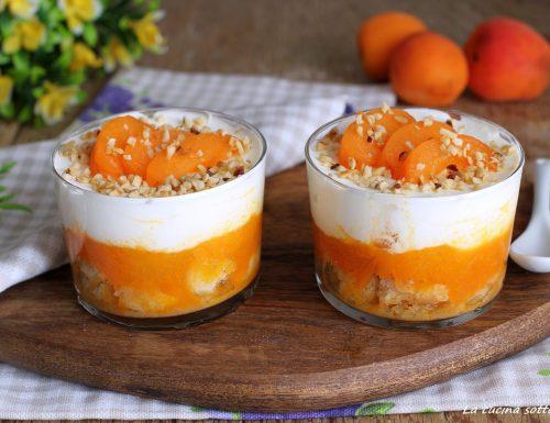 Coppette con crema di yogurt e albicocche
