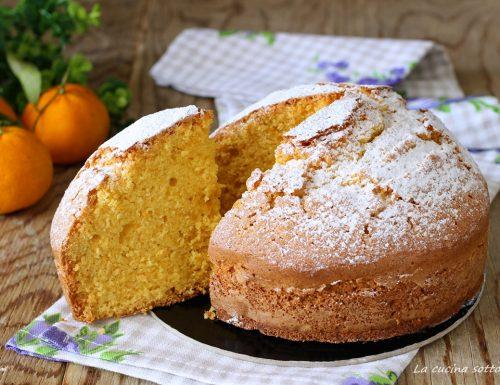 Torta ai mandarini frullati