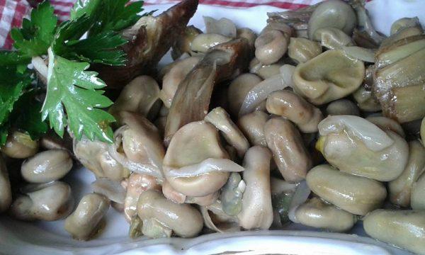 Fave e cipolle fresche