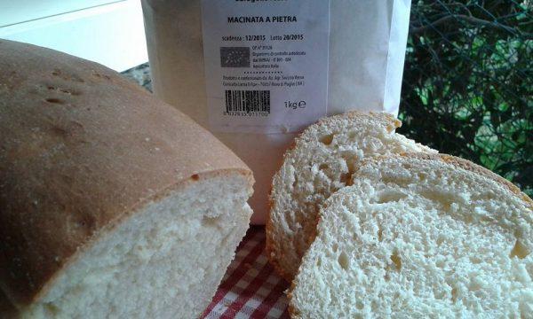 Pan bauletto con semola integrale