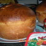 Panettone gastronomico con la macchina del pane (ricetta base)