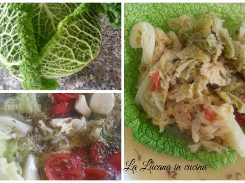 Zuppa di cavolo verza e finocchietto selvatico