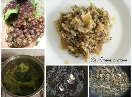 Pasta con broccoli rosa e semi di papavero