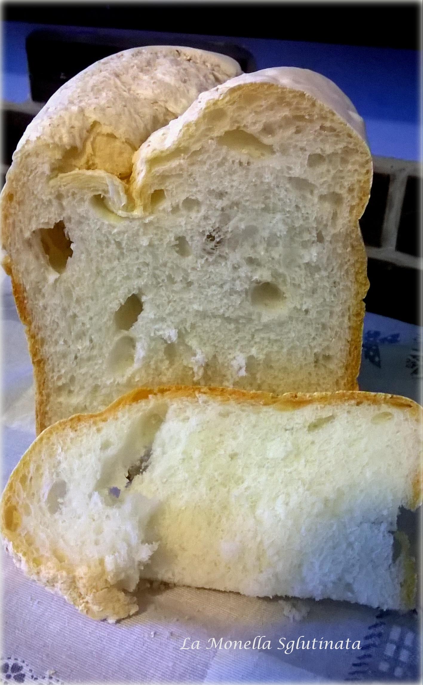 Pane senza glutine con mdp
