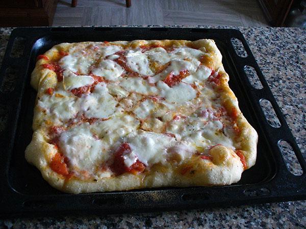 Ricerca ricette con pizza fatta in casa for Pizza in casa