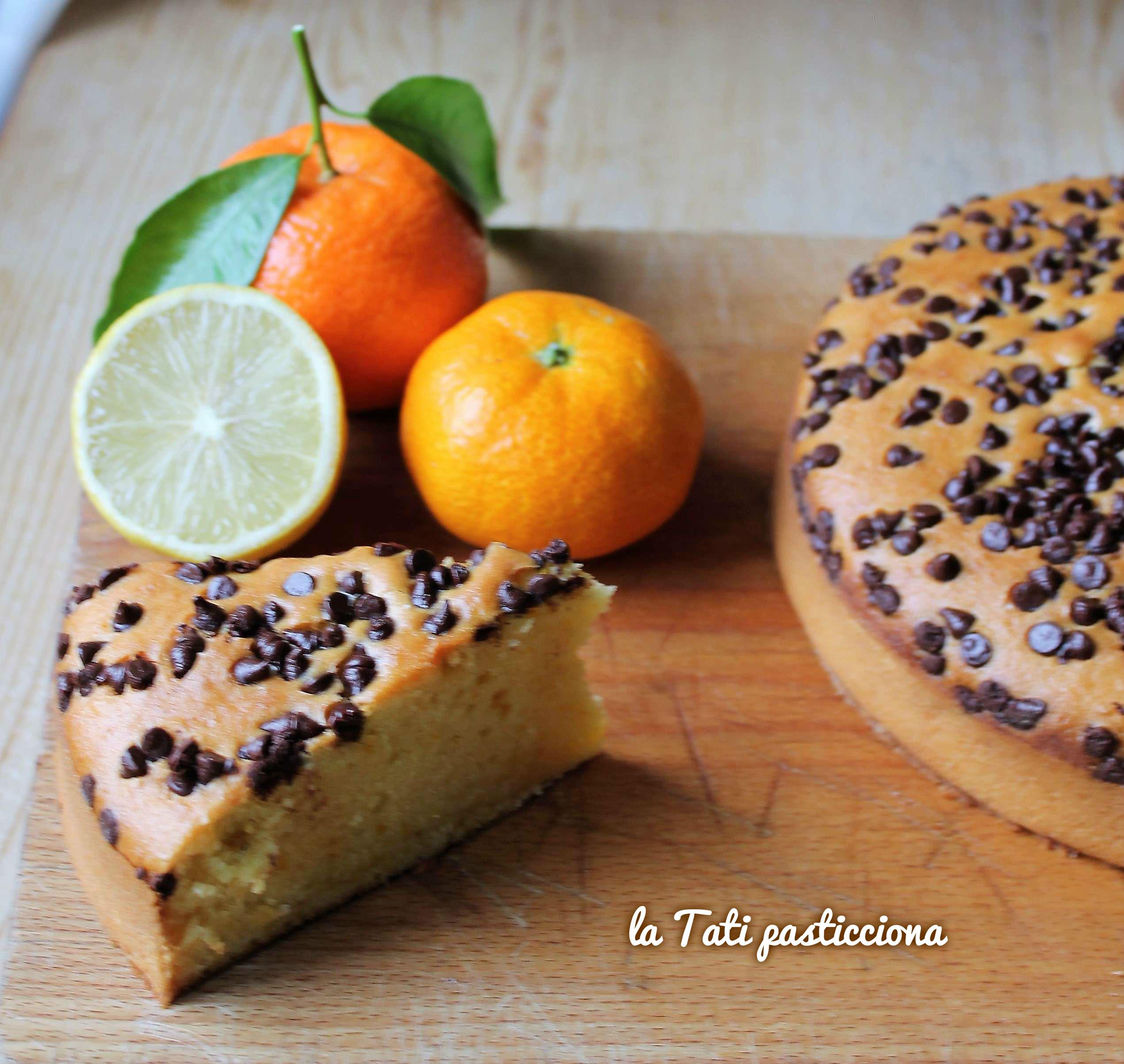 Torta Frullata Senza Uova agli Agrumi e Cioccolato