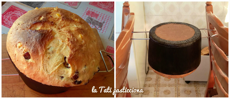 panettone tradizionale con lievito madre