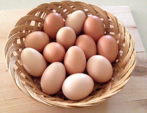 Congelare le uova…non tutti sanno che è possibile!