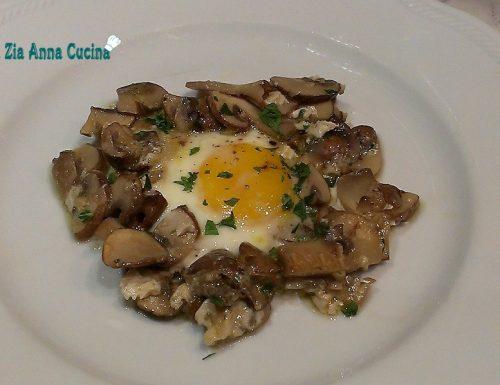 Nidi di funghi con le uova