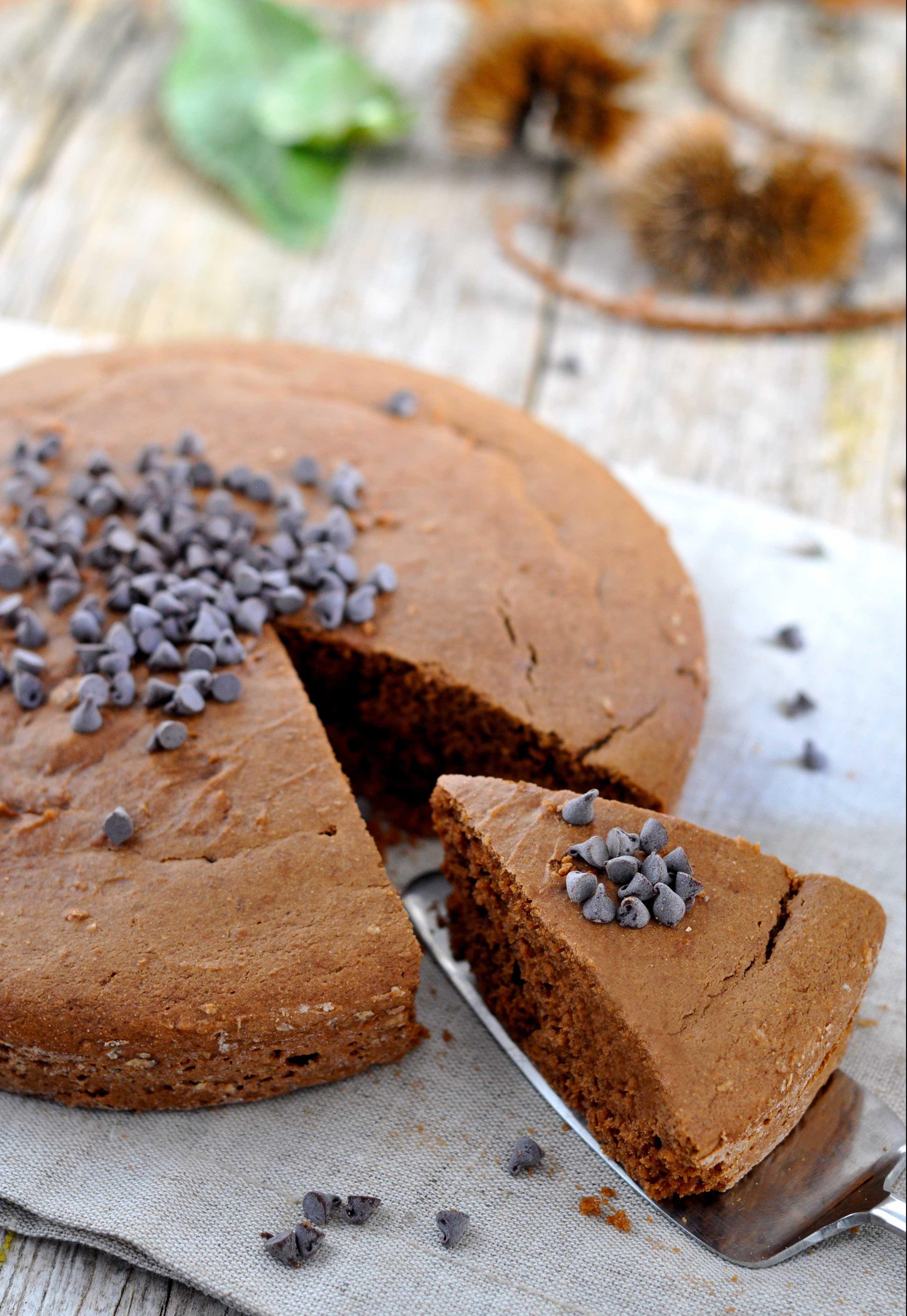 Torta morbida di castagne e cioccolato