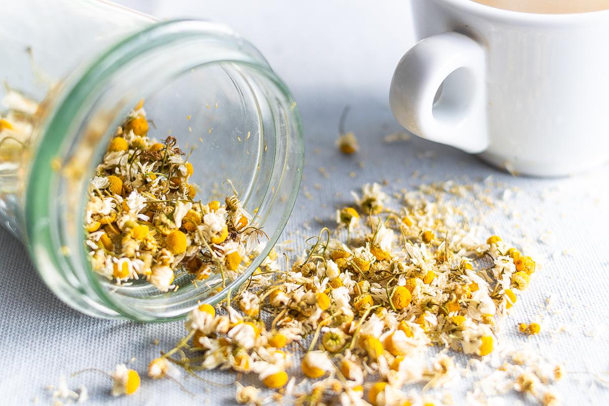 Come Seccare Le Piante come essiccare la camomilla in casa