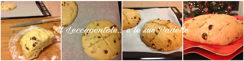 panettone basso tipo genovese pass 2