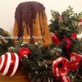 pandoro-n2-cioccolatoso-alla-nocciola-foto-blog-jpg