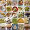 Le cuoche spaesate - tutte le ricette del 2019