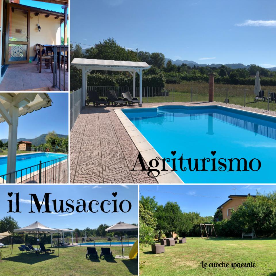Agriturismo il Musaccio, Barga