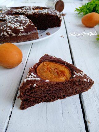 Torta light con cacao e albicocche