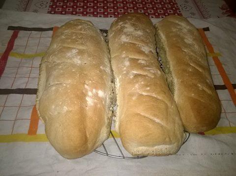 Pane comune fatto in casa facilissimo