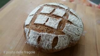 pane con farina di farro e grano saraceno