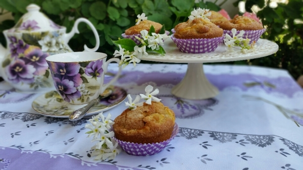 muffin al gelsomino