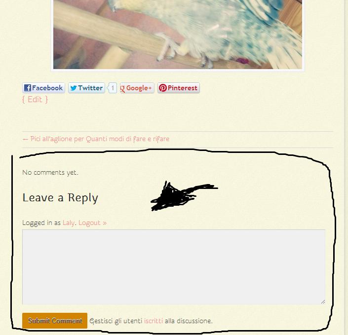 mini guida su come commentare in questo blog
