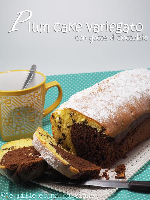Plumcake variegato con gocce di cioccolato
